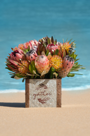 Thanksgiving 14 pc Protea Basket Arrangement