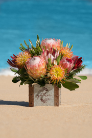 Thanksgiving 8 pc Protea Basket Arrangement